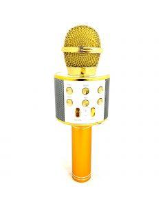 MICROPHONE-BUILT IN SPEAKER