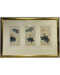 Water Color Lotus Framed Painting