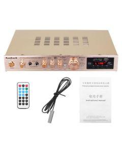 Digital Audio Karaoke Amplifier 5 Channel