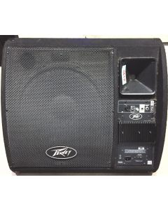 Peavey PV 15PM(Pair) OUTDOOR